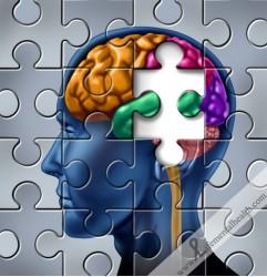 BrainPuzle